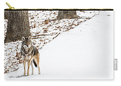 Carry-all Pouch featuring the photograph Lone Winter Coyote by Andrea Silies