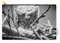 Lone Wolf Of The Smithsonian II Carry-all Pouch