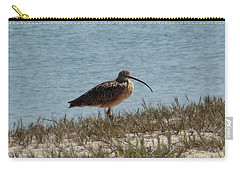 Long-billed Curlew Carry-all Pouch