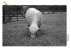 Longwool Sheep Grazing Carry-all Pouch