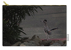 Carry-all Pouch featuring the photograph Look Out Wile E Coyote by Anne Rodkin