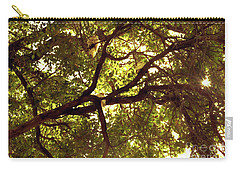 Carry-all Pouch featuring the photograph Look Up by Cassandra Buckley