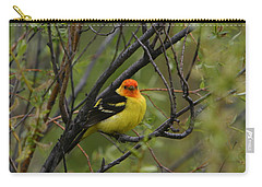 Looking At You - Western Tanager Carry-all Pouch