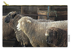 Looking For The Shepherd Carry-all Pouch