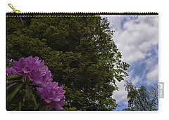Looking To The Sky Carry-all Pouch