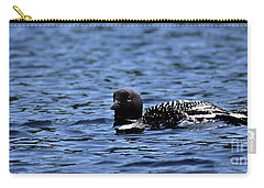 Loon Pan Carry-all Pouch by Skip Willits