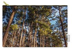 Lost In The Woods Carry-all Pouch by Linda Unger