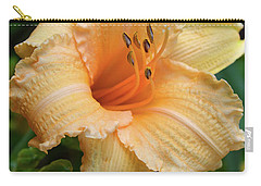 Carry-all Pouch featuring the digital art Louise Manelis Daylily by Eva Kaufman