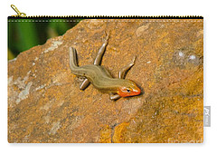 Lounging Lizard Carry-all Pouch