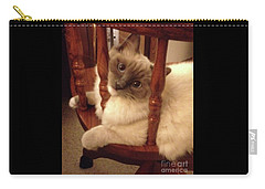 Lovable Ragdoll Kitten Carry-all Pouch