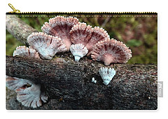 Lovely Lichens Carry-all Pouch