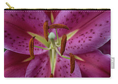 Lovely Lily Carry-all Pouch by Roberta Byram