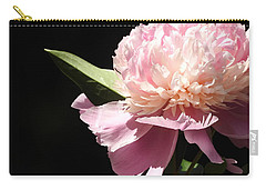 Carry-all Pouch featuring the photograph Loving The Sunshine by Betty-Anne McDonald