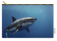 Lucy Posing At Isla Guadalupe Carry-all Pouch by Shane Linke
