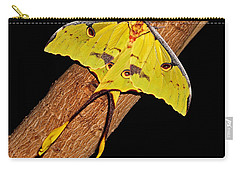 Carry-all Pouch featuring the photograph Luna Moth by Judy Vincent