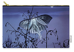 Luna Nights Carry-all Pouch