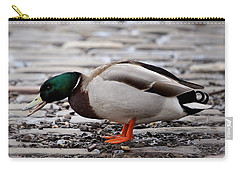 Carry-all Pouch featuring the photograph Lunch Time by Jeremy Lavender Photography