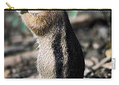 Carry-all Pouch featuring the photograph Lunchtime For Ground Squirrel by Sally Weigand