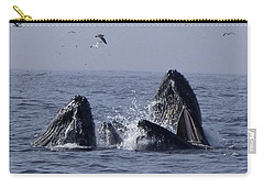 Lunge Feeding Humpback Whales Carry-all Pouch