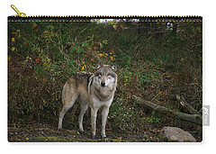 Carry-all Pouch featuring the photograph Lupine Pose by Shari Jardina