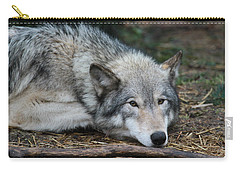 Carry-all Pouch featuring the photograph Lying In Wait by Laddie Halupa