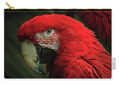Macaw Portrait Carry-all Pouch