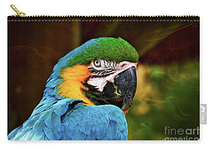 Macaw Portrait Carry-all Pouch by Kathy Baccari