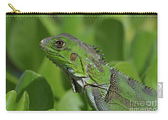Macro Of A Green Iguana Carry-all Pouch by DejaVu Designs
