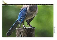 Mad Bird Carry-all Pouch