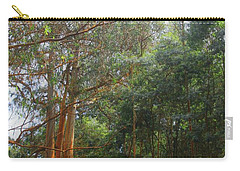Carry-all Pouch featuring the photograph Magnificent Maui by DJ Florek