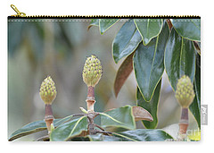Carry-all Pouch featuring the photograph Magnolia Buds by Maria Urso