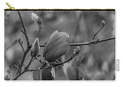 Magnolia Bw Blooms Buds Branches Carry-all Pouch