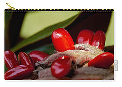 Magnolia Seeds Carry-all Pouch by Christopher Holmes