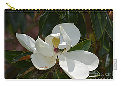 Carry-all Pouch featuring the photograph Magnolia With Beetle by Maria Urso