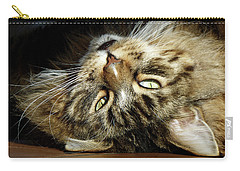 Carry-all Pouch featuring the photograph Main Coon, Crazy. by Roger Bester