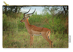 Carry-all Pouch featuring the photograph Majestic Impala by Gary Hall