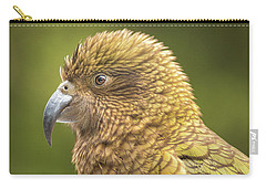 Kea Portrait Carry-all Pouch