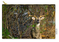 Majestic Whitetail Carry-all Pouch