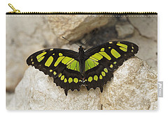 Carry-all Pouch featuring the photograph Malachite Butterfly - Siproeta Stelenes by Paul Gulliver