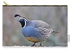 Male California Quail Carry-all Pouch