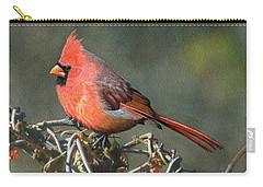 Male Cardinal Carry-all Pouch by Ken Everett
