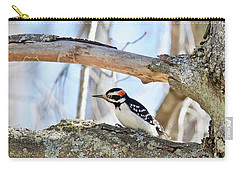 Carry-all Pouch featuring the photograph Male Downey Woodpecker 1112 by Michael Peychich
