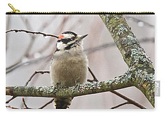 Male Downey Woodpecker Carry-all Pouch by Michael Peychich