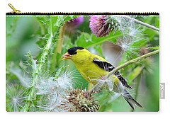 Male Goldfinch Carry-all Pouch