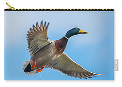 Male Mallard Fly By Carry-all Pouch