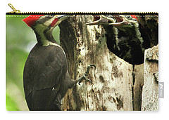 Male Pileated Woodpecker At Nest Carry-all Pouch