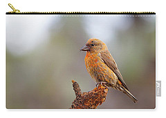 Male Red Crossbill Carry-all Pouch by Doug Lloyd