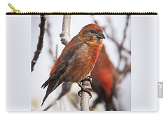 Male Red Crossbills Carry-all Pouch by Robert Potts