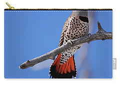 Male Red Shafted Northern Flicker Carry-all Pouch