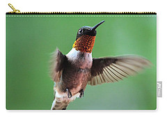 Male Ruby-throated Hummingbird Carry-all Pouch